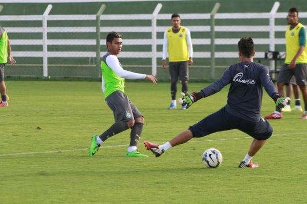 Murilo recebeu várias oportunidades com Ricardo Drubscky Foto: Rosiron Rodrigues/Goiás EC/Divulgação/Divulgação