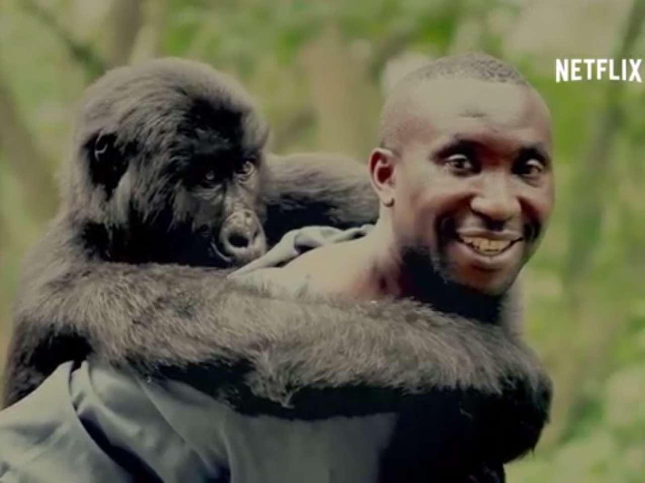 Documental 'Virunga' estrena en Netflix al mismo tiempo que en EU. Foto: Netflix