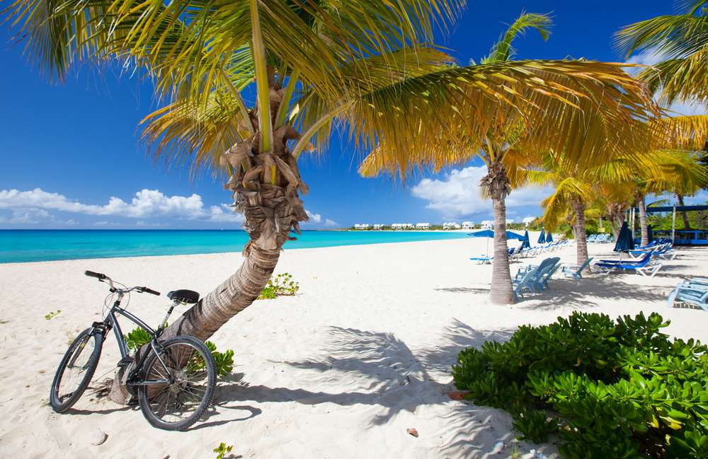 Passeios de bicicleta estão entre as atividades guiadas pela equipe de bordo Foto: BlueOrange Studio/Shutterstock