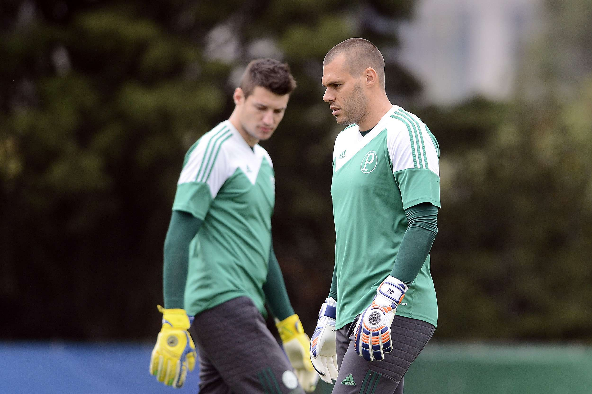 Deola vai ter nova chance na equipe do Palmeiras Foto: Mauro Horita/Agif/Gazeta Press