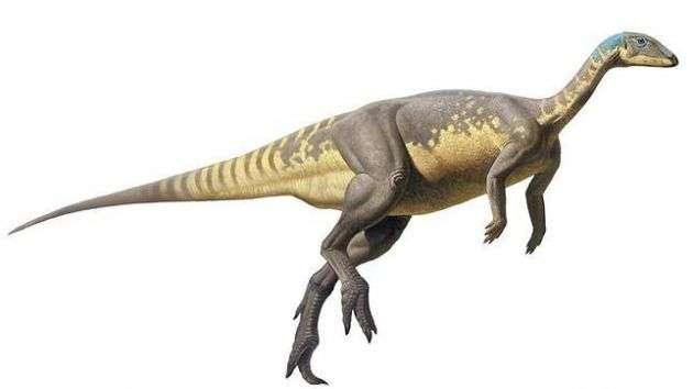 Nueva especie de dinosaurio del Jurásico ibérico Foto: UNED
