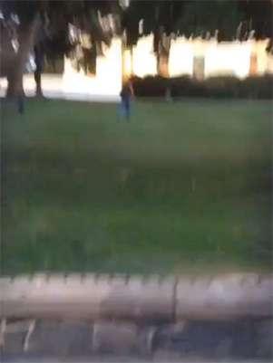 Vídeo registra momento em que o homem invadiu a Casa Branca Foto: Facebook/Reprodução