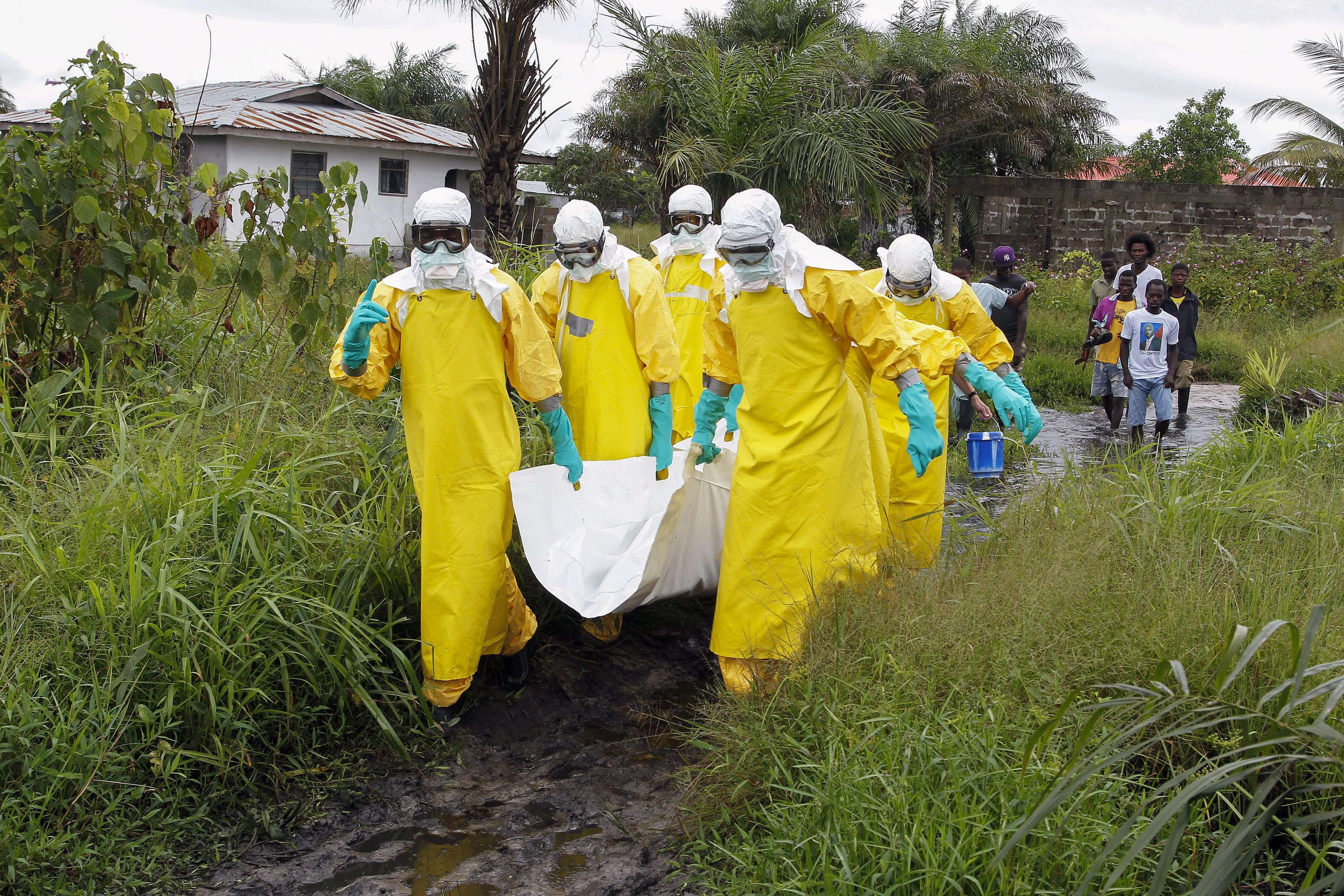 La fiebre hemorrágica del Ébola, altamente contagiosa, causó casi 3,000 muertos de entre 6,000 casos detectados. Foto: Archivo/EFE en español