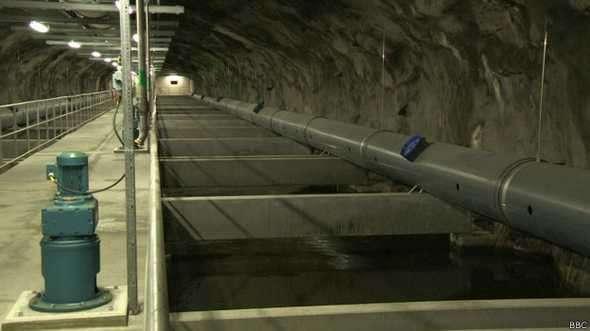 Científicos suecos prueban su sistema de sensores en las aguas residuales de la capital sueca Foto: BBCMundo.com