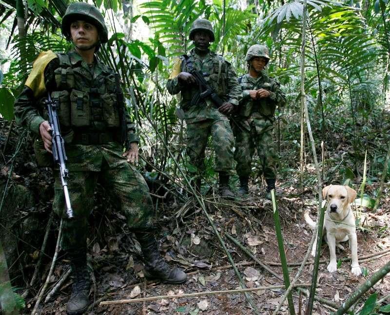 Exército colombiano apreendeu mais de 3 toneladas de explosivos das Farc Foto: John Vizcaino/Reuters