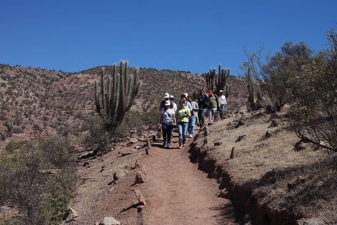 El sector se encuentra cerca del Valle del Elqui. Foto: Terra