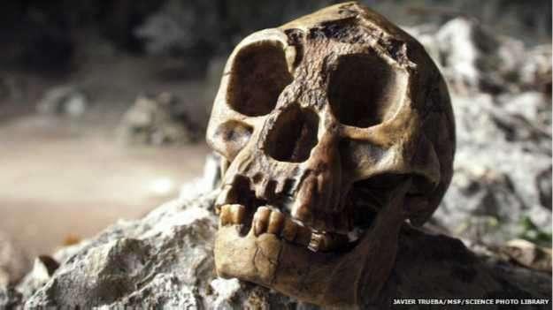 Se cree que el Hobbit vivió hasta hace 20,000 años Foto: BBC Mundo/SPL