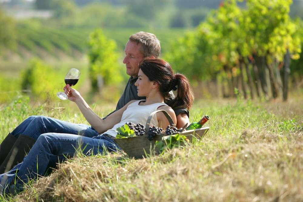 Cursos sobre vinhos em cruzeiros fornecerão certificados aos hóspedes Foto: Crédito: auremar/Shutterstock
