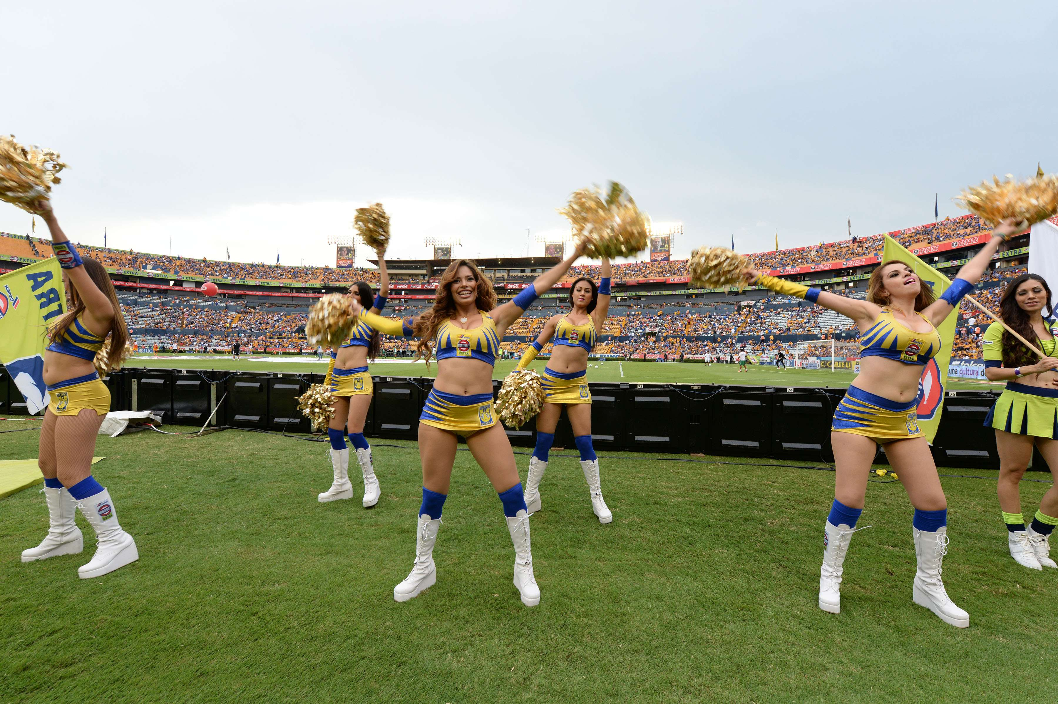 Las bellas porristas de Tigres muestran la pasión por su equipo. Foto: Mexsport