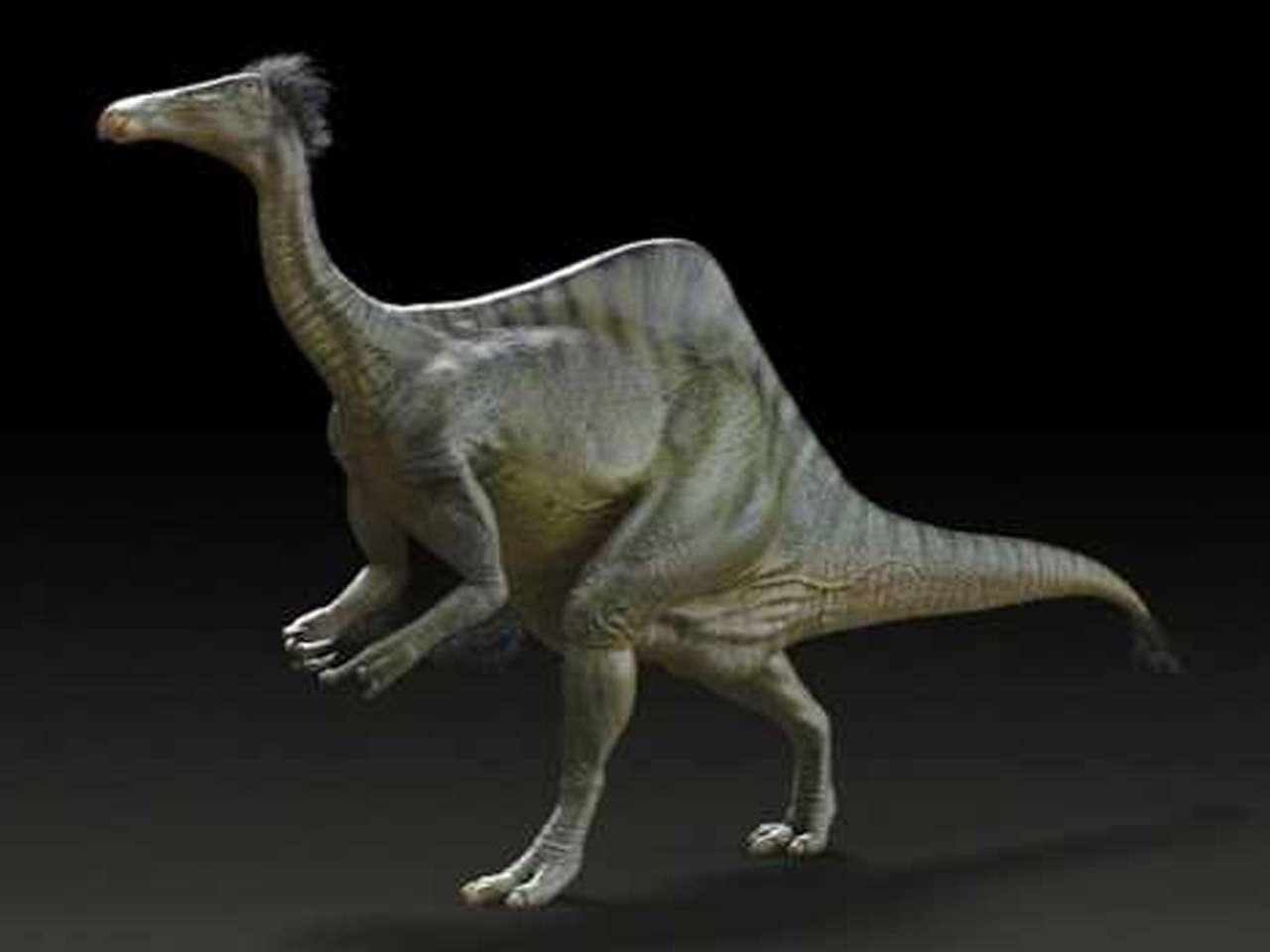 Se trataba de un dinosaurio bípedo con unas extremidades anteriores que medían 2,4 metros de largo, incluidas unas garras de más de 20 centímetros Foto: Reuters en español