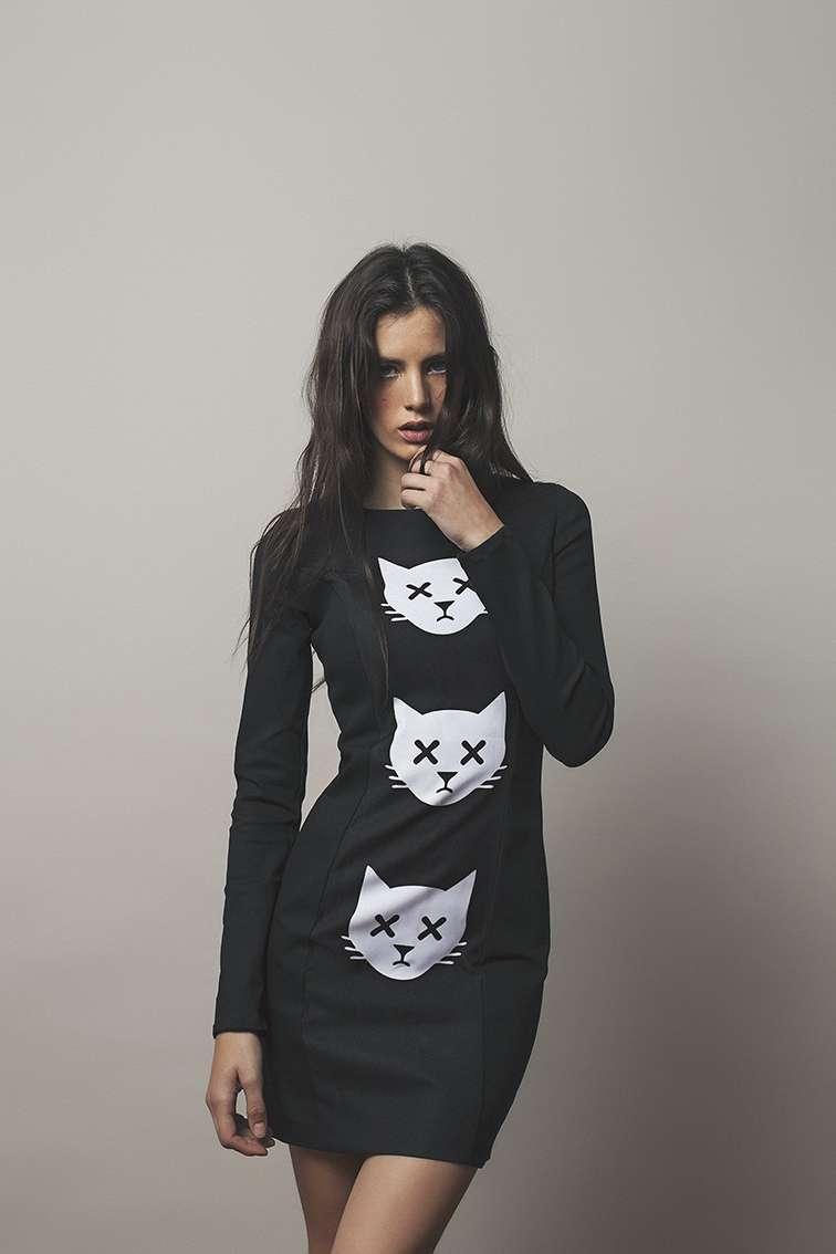 moda de gatos Foto: Alejandra Salcido