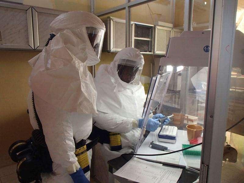 O Banco Mundial prometeu mais 100 milhões de dólares para ajudar a recrutar profissionais estrangeiros para atuarem no combate ao Ebola, elevando os recursos destinados aos três países mais atingidos pela doença a mais de meio bilhão de dólares. Foto: USAMRIID/Reuters
