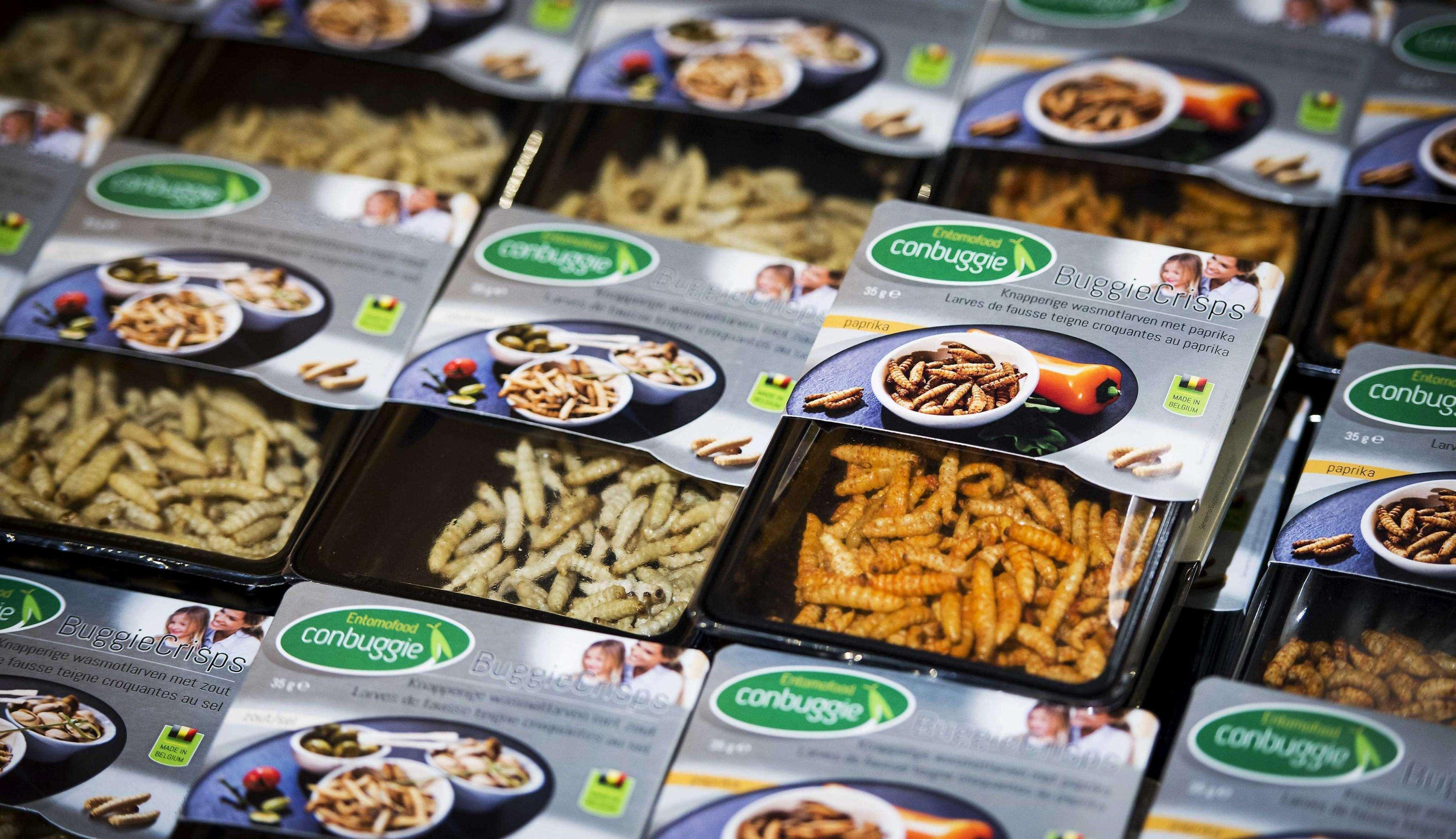 Vista de varias cajas de aperitivos a base de larvas de insectos en un supermercado de la cadena Jumbo en Groningen, Holanda, ayer, viernes 31 de octubre de 2014. Foto: EFE en español