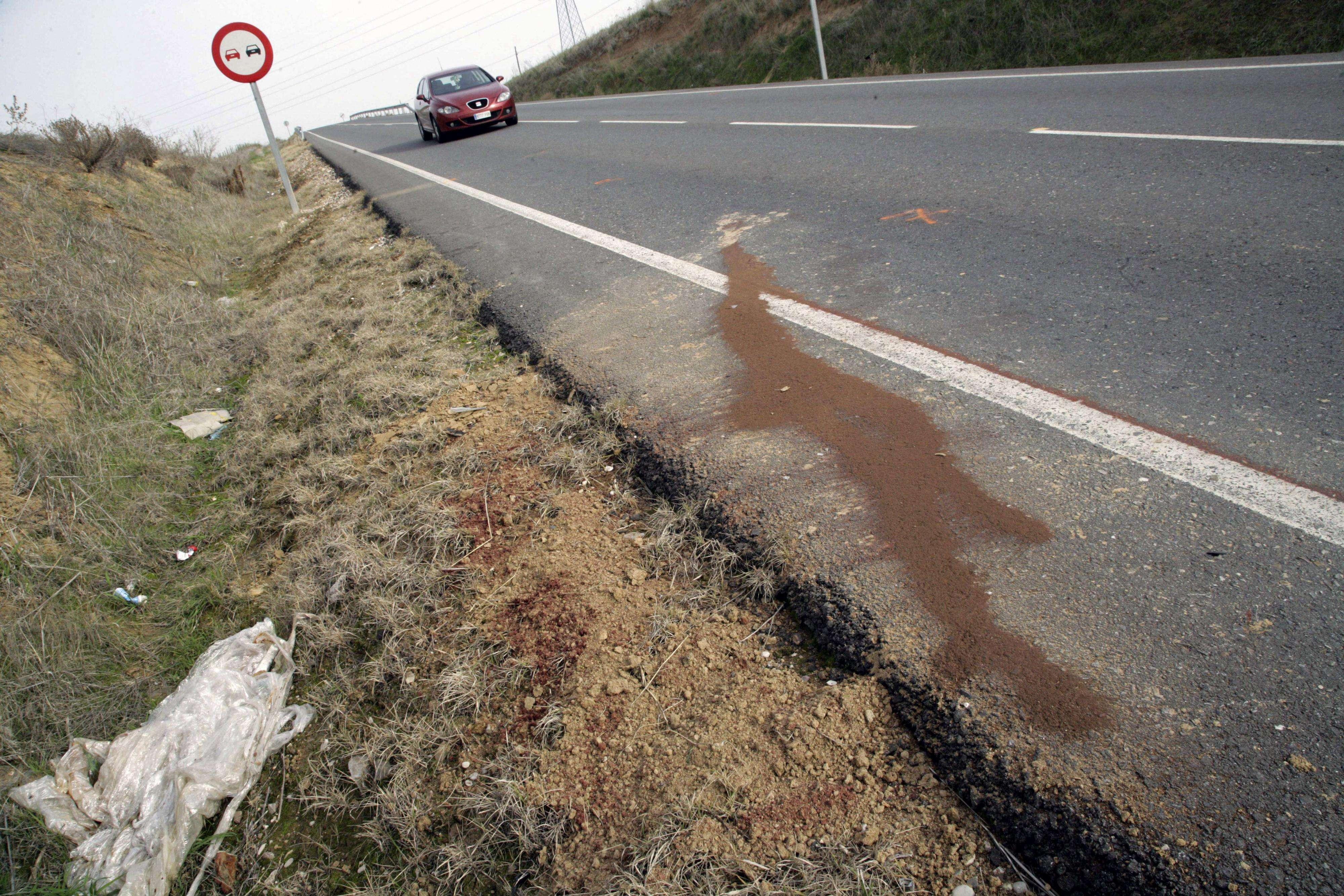 Lugar de la carretera TO-3927, a 4 kilómetros de Fuensalida (Toledo), donde tres niñas, de 12, 15 y 16 años, han fallecido esta mañana tras ser atropelladas por un turismo, en un accidente de tráfico en el que han resultado heridas otras dos personas, una muy grave y otra leve. Foto: EFE en español