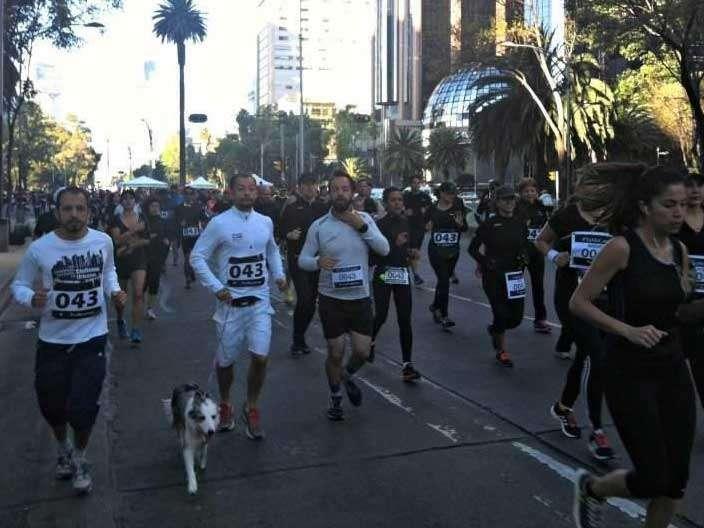 Los deportistas partieron del Ángel de la Independencia alrededor de las 8:30 de la mañana de este domingo. Foto: Twitter/@peperivera