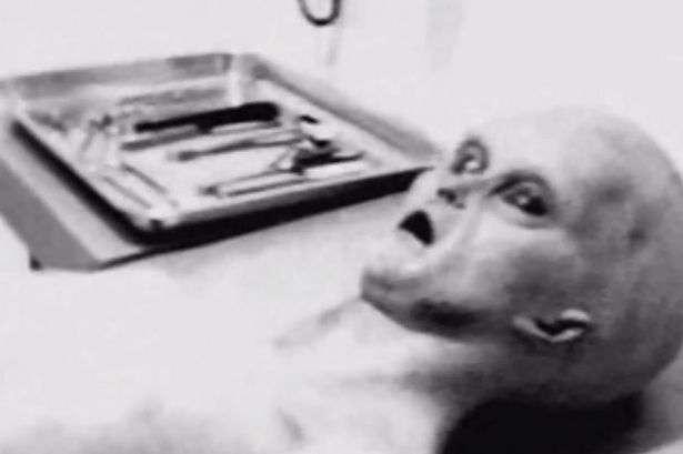 Segundo Carey, o filme com as imagens do suposto alienígena mostra uma criatura de cerca de 1,20 metros, de cabeça desproporcionalmente grande e olhos parecidos com o de um inseto Foto: The Mirror/Reprodução