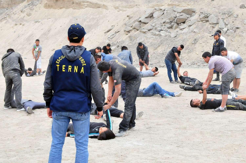 Grupo Terna reforzará la seguridad en Lima bajo la modalidad de personal encubierto. Foto: Terra Perú