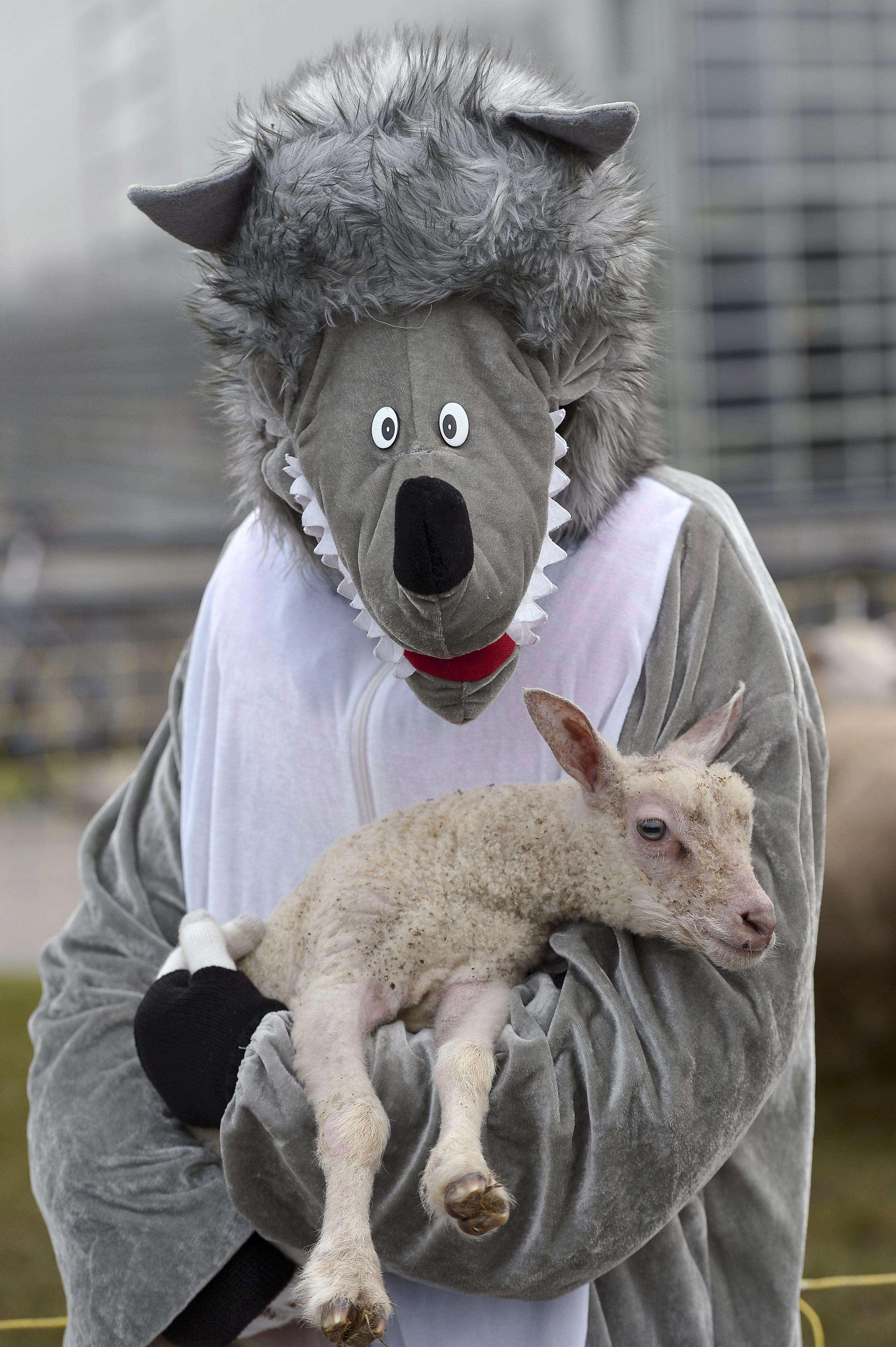 Foto: FREDERICK FLORIN/AFP