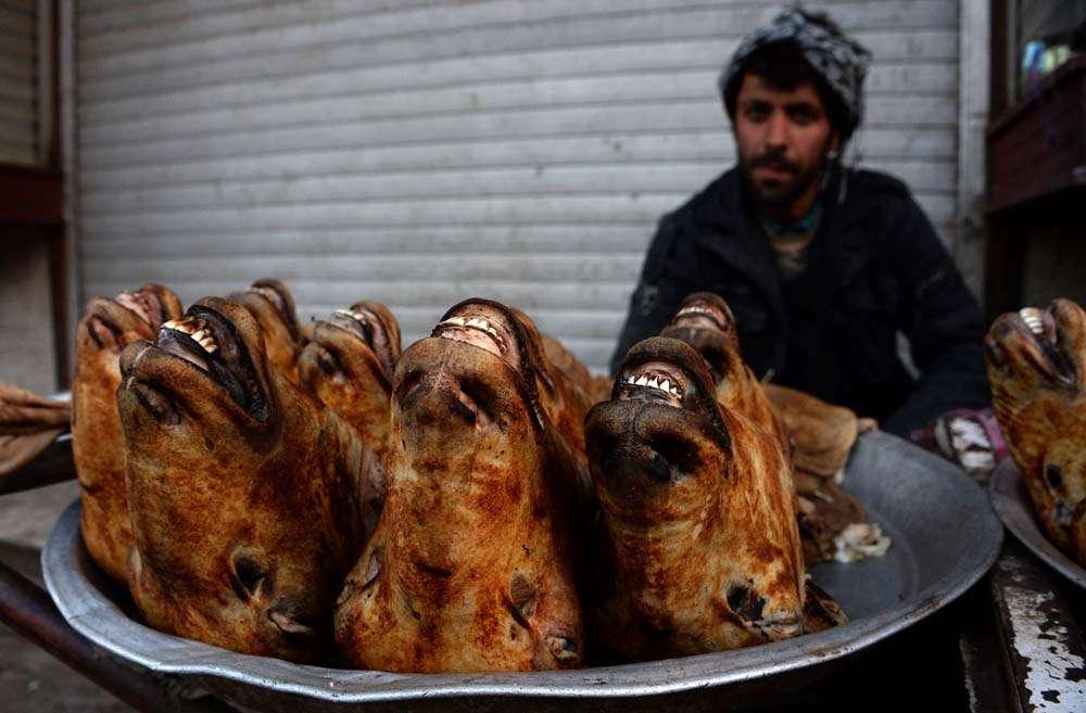 Las imágenes más impactantes del 28 de noviembre de 2014 Foto: AFP en español
