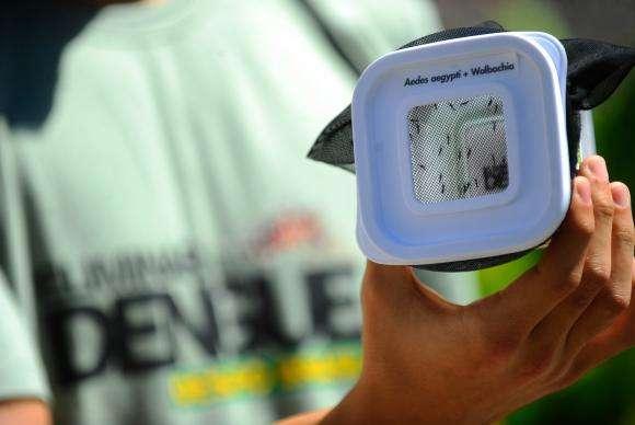 Recursos vão custear ações de vigilância, prevenção e controle das duas doenças Foto: Fernando Frazão/Agência Brasil