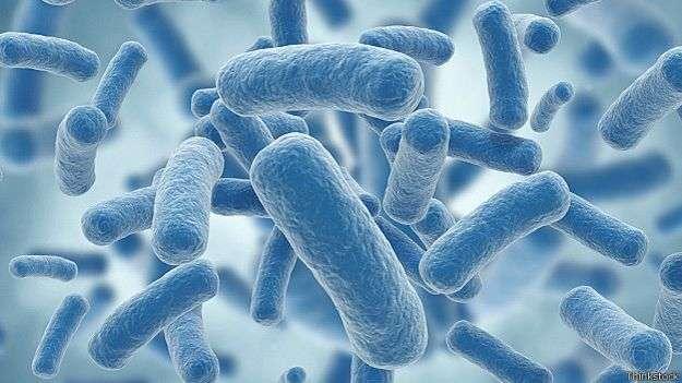 En los últimos años la bacteria klebsiella pneumoniae fue detectada en varios países latinoamericanos Foto: BBC Mundo/Thinkstock