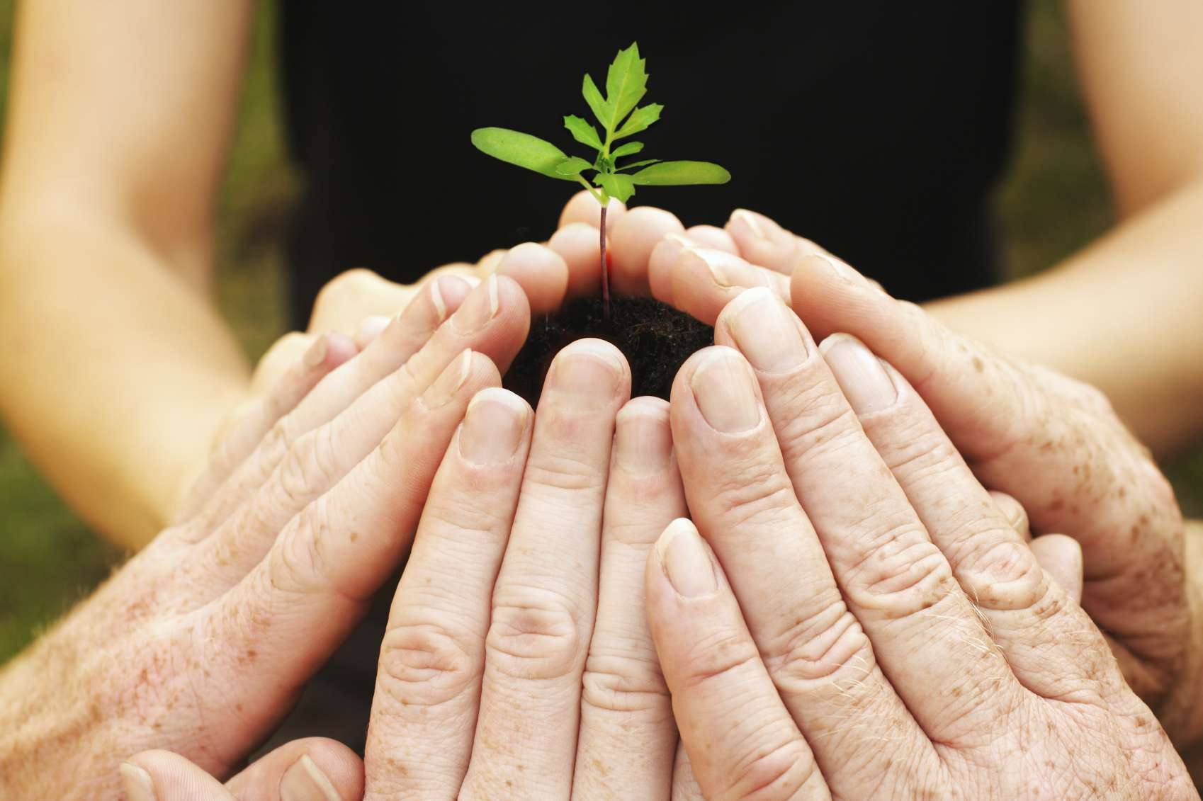 El Día Internacional de la Solidaridad Humana pretende hacer reflexionar al mundo sobre la importancia de la ayuda mutua. Foto: iStock