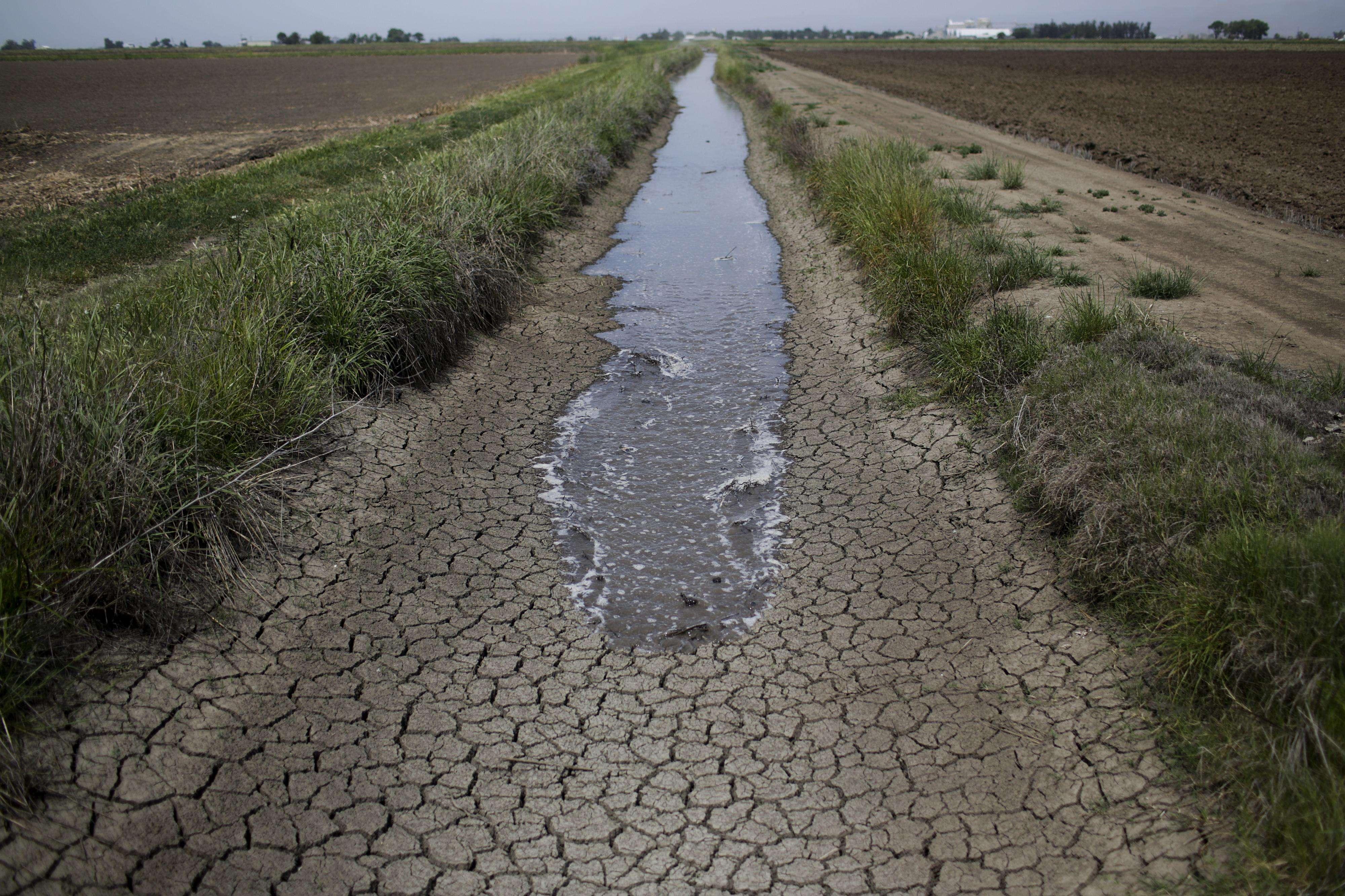 Jueves 1 de mayo.- Entre las granjas productoras de arroz, el agua de riego se extiende a lo largo de la zanja seca que sirve normalmente para proporcionar agua a los campos, en Richvale, California. La sequía asoló este año las zonas de cultivo y algunas áreas metropolitanas de California. Foto: Jae C. Hong/AP
