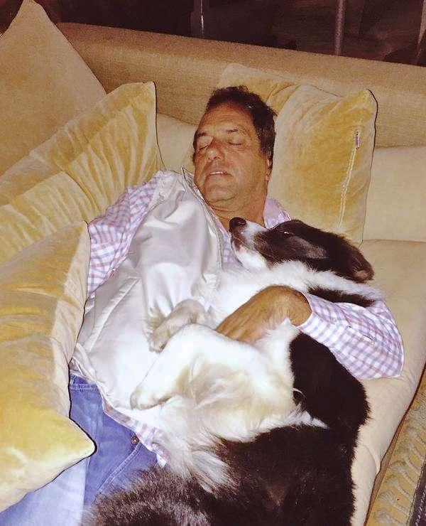Daniel Scioli descansa junto a su perro. Foto: Twitter @rabolinikarina
