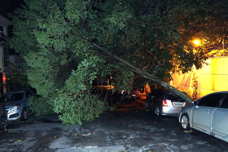 Raios e árvores caídas: veja fotos da tempestade em SP Foto: Alexandre Serpa/Futura Press