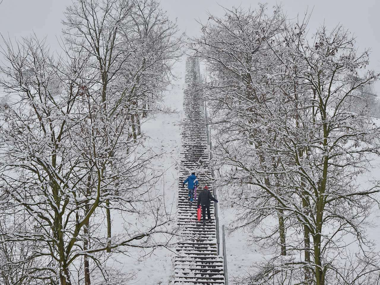 Niños cargan trineos en un idílico paraíso invernal que azotó el oeste de Alemania, 24 de enero de 2015. Foto: AP en español