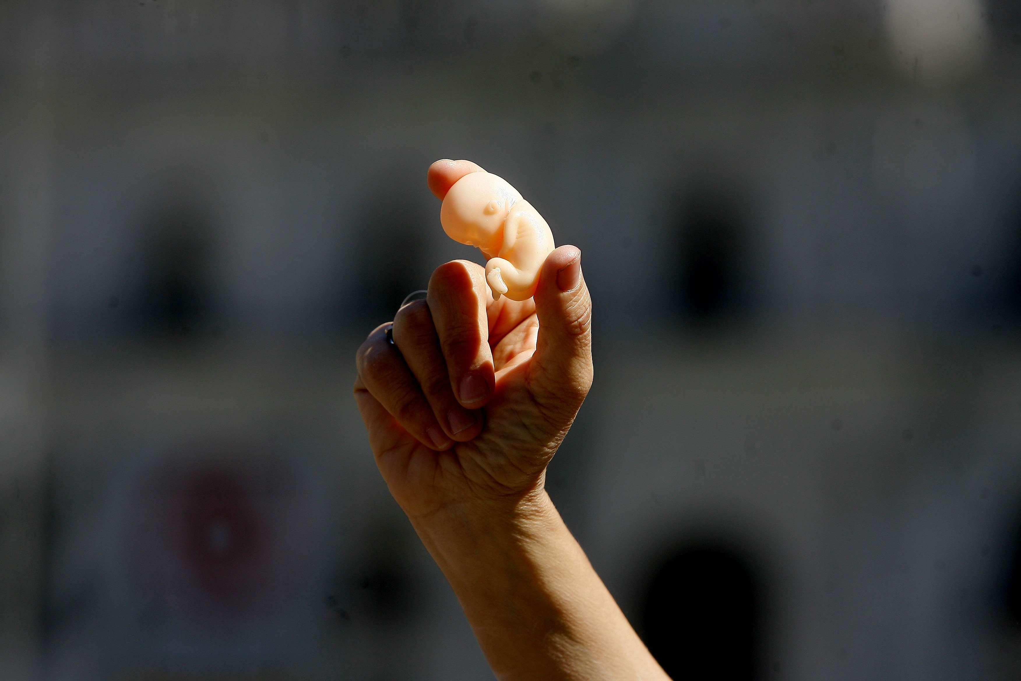 Una mujer del grupo Informaborto, sostiene una reproducción de un bebe durante una campaña frente al palacio de la Moneda, el 12 de Noviembre de 2014. Foto: Agencia UNO