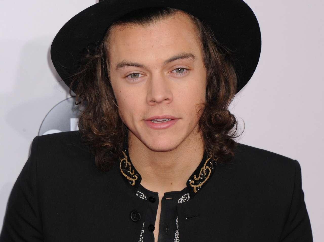 Harry Styles estuvo acompañado de varias celebridades, como David Beckham y Kelly Osbourne, entre otros. Foto: Photo AMC
