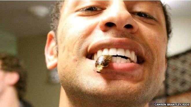 Por 30 dias, Camrey Brantley-Ríos comeu insetos no café da manhã, almoço e jantar Foto: BBCBrasil.com