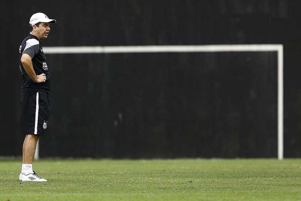 Enderson criticou a supervalorização de alguns jovens valores do clube Foto: Ricardo Saibun/Divulgação Santos FC