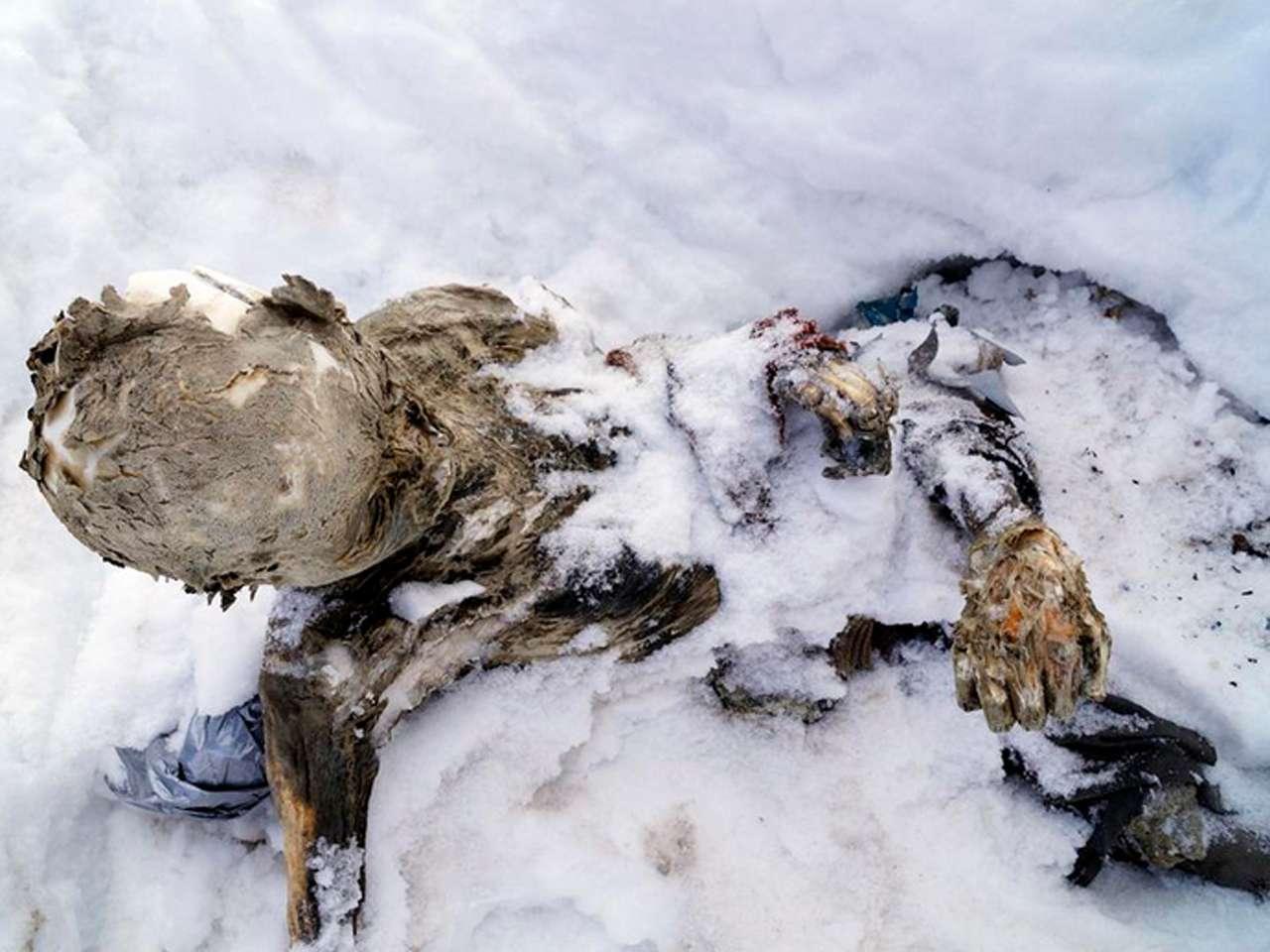 Desde la cuenta de Twitter del Ayuntamiento de Chalchicomula de Sesma se dieron a conocer fotos de los cuerpos de los alpinistas momificados encontrados en el volcán mexicano El Pico de Orizaba Foto: @chalchi_ayto