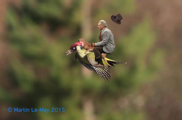 Harrison Ford vira meme após acidente Foto: Twitter/Reprodução