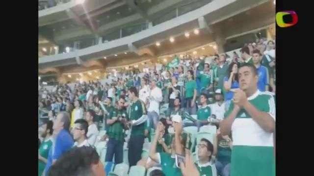 Leitores mostram festa no Allianz Parque antes de derrota