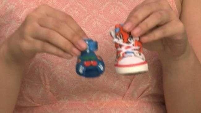 De sapatos a biquínis: lançamentos deixam pets estilosos