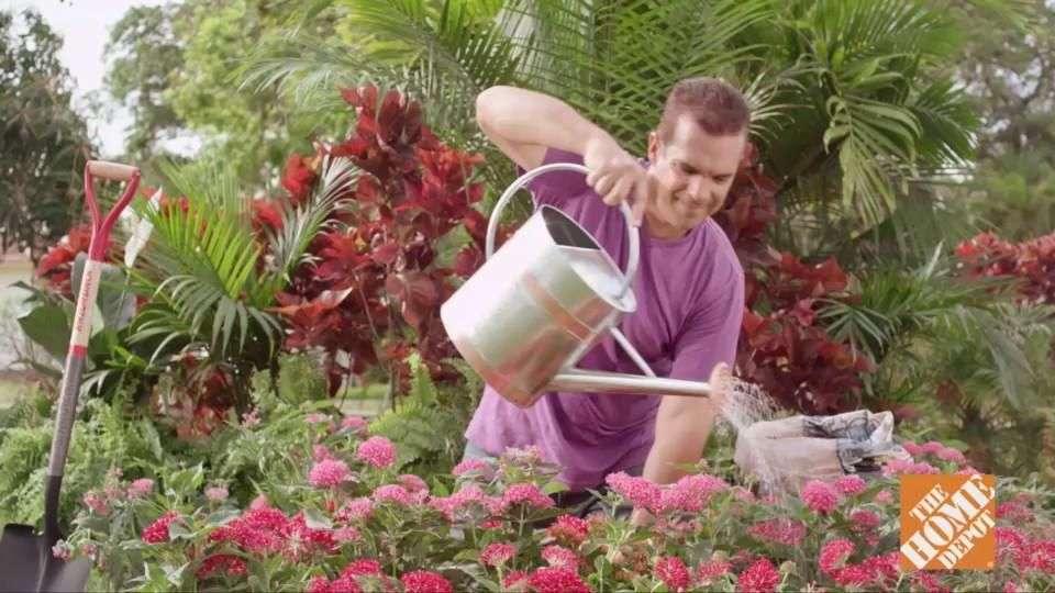 Cómo hacer un macizo de flores en el jardín