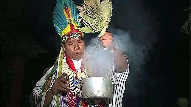 El alucinógeno yagé se pone de moda en Colombia