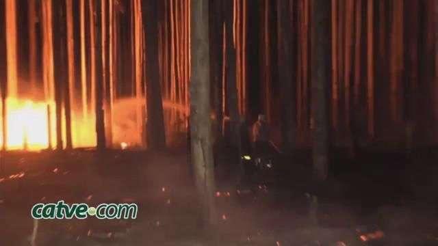 Bombeiros controlam incêndio em vegetação no Santa Felicidade