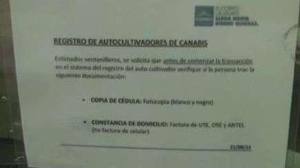 Uruguai abre registro oficial para cultivadores de maconha