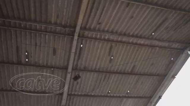 Temporal provoca destelhamento de casas em Ibema e Campo Bonito