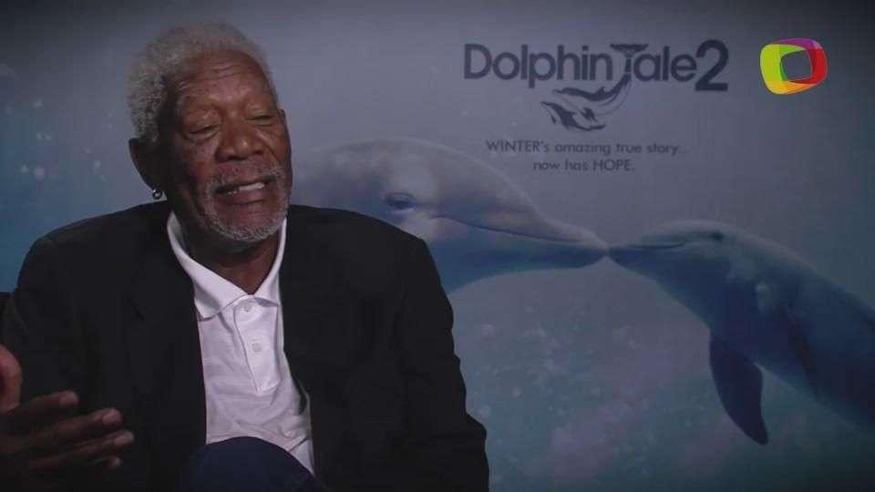 'Dolphin Tale 2': Harry Connick Jr y Morgan Freeman
