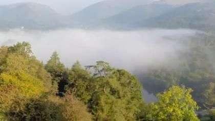 Nevoeiro invade bosque na Inglaterra