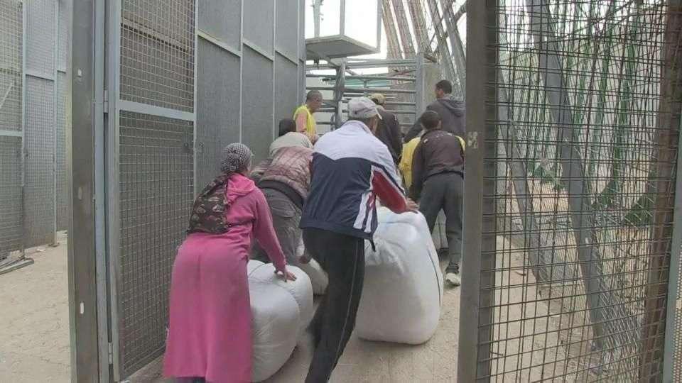 20 mil africanos intentaron cruzar valla de Melilla en 2014