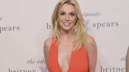 Is Britney Spears Switching Careers?