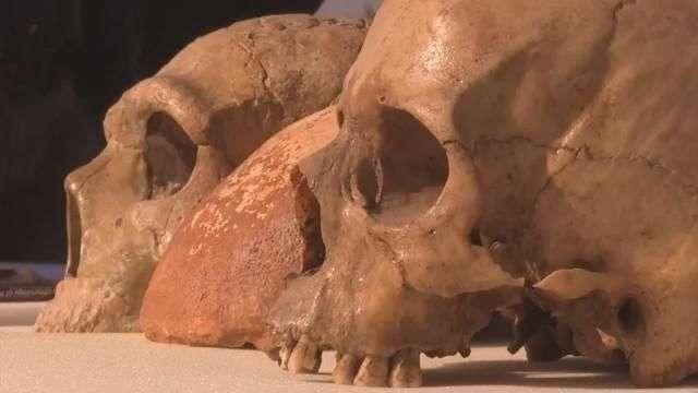 Descubren cráneo de homo sapiens de 55 mil años