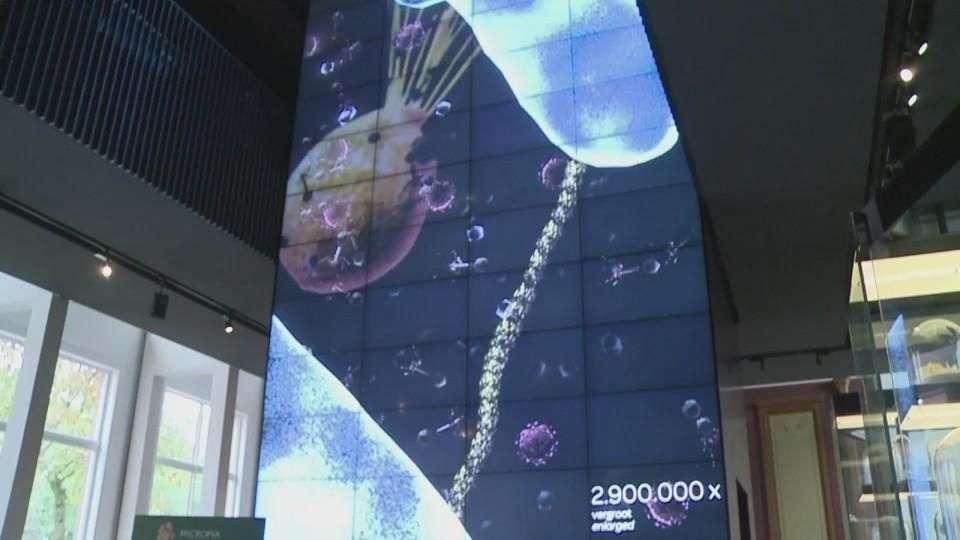Micropia: El primer zoológico de microbios del mundo