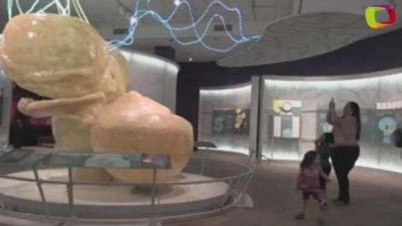 Un viaje al interior del cerebro humano